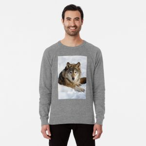 Wolf (canis lupus) portrait Lightweight Sweatshirt